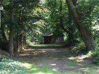 Houtschuur bij het bos